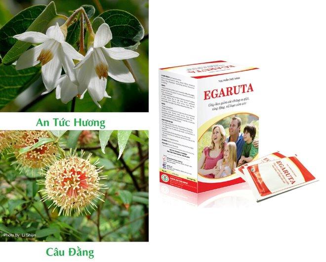 EGARUTA - giúp hỗ trợ điều trị bệnh tăng động giảm chú ý ở trẻ nhỏ